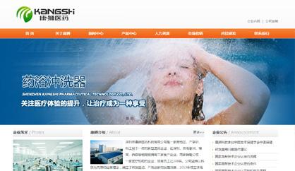 南山网站建设,医药公司网站