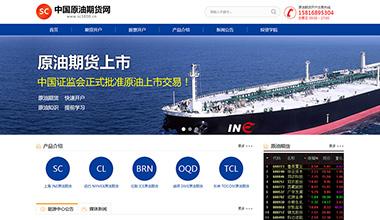 咨询服务类网站建设,深圳网络公司